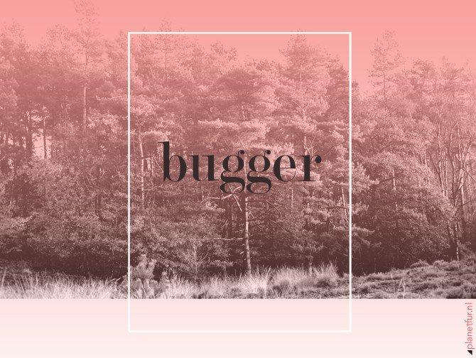 Bugger - Planet Fur