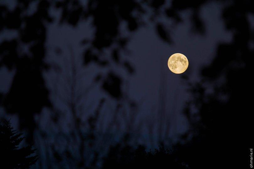 Zie de maan - Oh Marie!