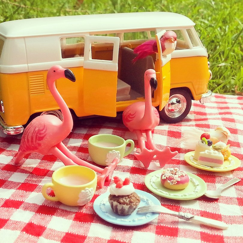 A flamingo a day - Oh Marie!