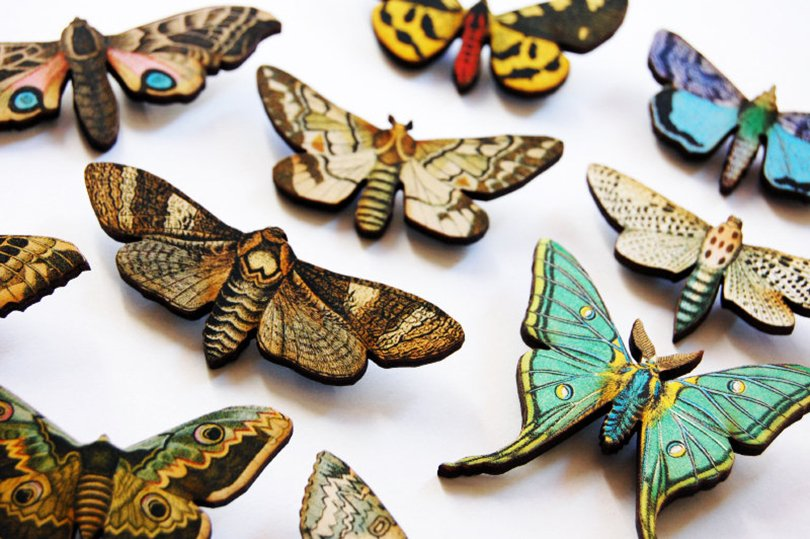 Retro Natural History Moth - blingstopaythebills on Etsy