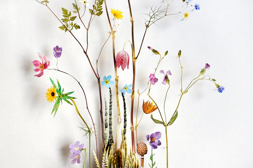 Anne ten Donkelaar flower constructions14