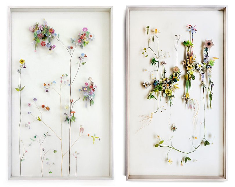 Anne ten Donkelaar flower constructions17