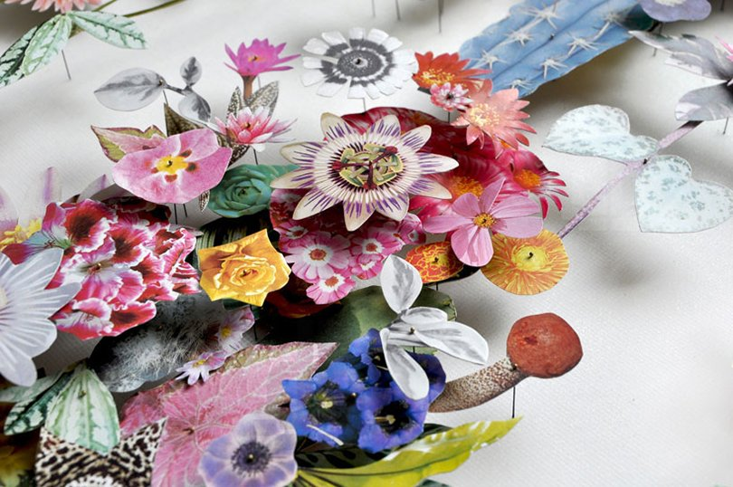 Anne ten Donkelaar flower constructions22