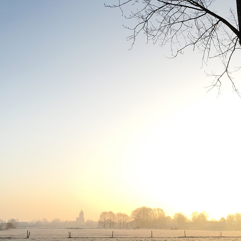Instagramprofiel Hannie van Breda-Arts - Oh Marie!